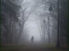 Foggy Idea   by <b>Tomros</b> ( a Panoramio image )
