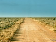 The Road to Cook, 2002 by <b>InTheBush</b> ( a Panoramio image )
