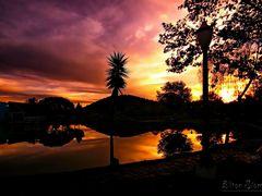 Em uma tarde no Parque Aquatico by <b>Eliton Sloma</b> ( a Panoramio image )