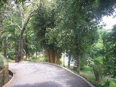 Ambasevana Walawwa by <b>Upali</b> ( a Panoramio image )