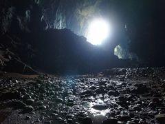 Deer Cave by <b>Banga1</b> ( a Panoramio image )