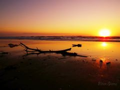 The branch and the sun by <b>Eliton Sloma</b> ( a Panoramio image )