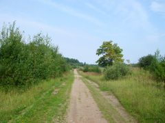 В деревне Дупли - village Dupli by <b>somili</b> ( a Panoramio image )