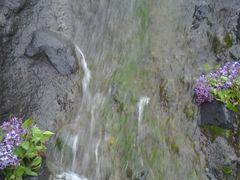 Koseler deresi by <b>MET</b> ( a Panoramio image )