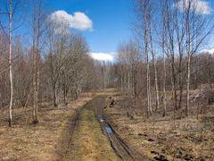 весенняя проселка by <b>alinco_fan</b> ( a Panoramio image )