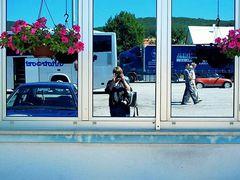 Petunije by <b>l@l</b> ( a Panoramio image )