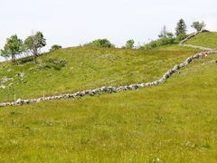 Juraweiden/Pastures In The Swiss Jura Mountains by <b>loamvalley</b> ( a Panoramio image )