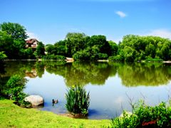 TOOGOOD POND - Markham, ON, CANADA by <b>LourdesC</b> ( a Panoramio image )