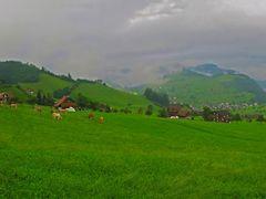 SWI Stans [Vierwaldstaetterssee] from Stanserhornbahn {speedy 25 by <b>KWO Tsoumenis</b> ( a Panoramio image )