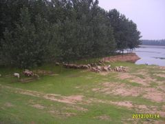 Без названия by <b>???</b> ( a Panoramio image )