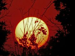 Sunset by <b>javad Ale ali</b> ( a Panoramio image )