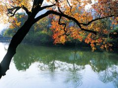 Без названия by <b>John Su</b> ( a Panoramio image )