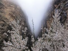 kermanshah-chalabe by <b>Atefeh Atarodi</b> ( a Panoramio image )