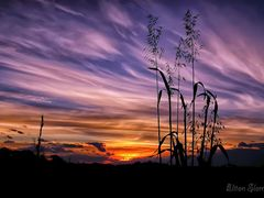 The colors of the cirrus by <b>Eliton Sloma</b> ( a Panoramio image )