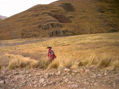 camino a la escuela by <b>Jaime Caviedes</b> ( a Panoramio image )