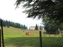 Creux du Van by <b>Patrick Nouhailler</b> ( a Panoramio image )