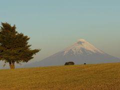 VOLCAN Y CAMPOS DE FRUTILLAR by <b>MANUEL MARDONES</b> ( a Panoramio image )