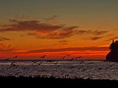 Jordan River Sunset by <b>Randy Hall</b> ( a Panoramio image )