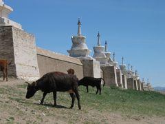 Erdene Zuu Monastery in Kharkhorin by <b>ooswald</b> ( a Panoramio image )