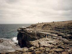 Sea Lion Island by <b>Bob Wood</b> ( a Panoramio image )
