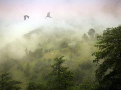 Timeless Travelling .... by <b>serkes</b> ( a Panoramio image )