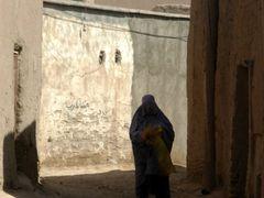 Herat_old town by <b>davidadamex</b> ( a Panoramio image )