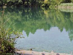 Plitvicei - tavak / Plitvice lakes by <b>Elemer</b> ( a Panoramio image )