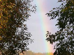 Rainbow by <b>Sirka</b> ( a Panoramio image )