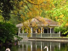"""Dublin - Autumn in St. Stephen""""s Green Park by <b>Piotr Wojdyla</b> ( a Panoramio image )"""