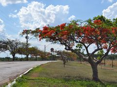 Campus II, UFG. by <b>Arolldo Costa Oliveira</b> ( a Panoramio image )
