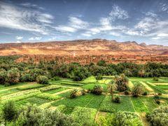 Souss-Massa-Draa by <b>Martin (WPF)</b> ( a Panoramio image )