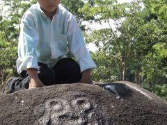 Piedra Olmeca by <b>juanjacobo</b> ( a Panoramio image )