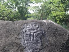 Rastros de la Transicion Olmeca a Maya by <b>juanjacobo</b> ( a Panoramio image )