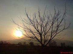 Druni by <b>Elfat Baftijari</b> ( a Panoramio image )