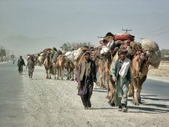 A camel caravan on the Road to Jalalabad by <b>© Morrique</b> ( a Panoramio image )