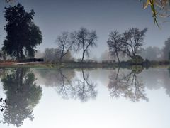 An Autumn foggy morning in Washington Park - The pond ... UPSIDE by <b>Antoine Jasser</b> ( a Panoramio image )