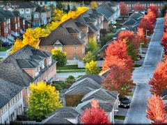 Fall In The City by <b>seventhheaven</b> ( a Panoramio image )