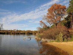 small Pond by <b>BernardJ47</b> ( a Panoramio image )