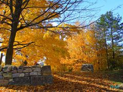 AUTUMN AT HART HOUSE FARM - Caledon ON by <b>Fito Rojas</b> ( a Panoramio image )