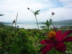 Vista al Lago by <b>Jhimez</b> ( a Panoramio image )