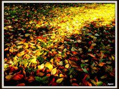 Toamna de langa noi - Autumn all around us by <b>Argenna</b> ( a Panoramio image )
