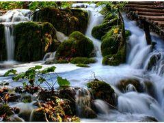 © • A vizeses csabito szepsege by <b>Dezso Biczo ©</b> ( a Panoramio image )