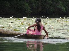 Rio Dulce . Jardin acuatico--Dedicada a Alberto Asensio--------- by <b>AnaMariaOss</b> ( a Panoramio image )