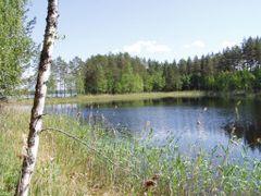 Suuri Lintusaari by <b>i_sairanen</b> ( a Panoramio image )