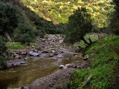 la vall?e de larbaa by <b>aissam1115</b> ( a Panoramio image )