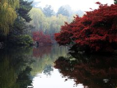 Fish-watching pond by <b>Manup</b> ( a Panoramio image )