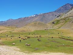 "Vista ""Rio de Vergara""  paso internacional ""Vergara"" ""Cordillera by <b>Omar Gobbi</b> ( a Panoramio image )"