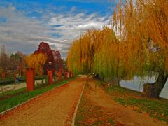 ROM Bucuresti Parcul si Lacul Herastrau Insula Trandafirilor by  by <b>KWO Tsoumenis</b> ( a Panoramio image )