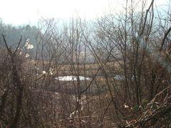 Unkenteiche by <b>schoella</b> ( a Panoramio image )