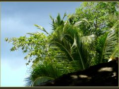 """Anse Soleil, Mahe, Seychelles by <b>Pom""""</b> ( a Panoramio image )"""